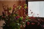 http://photo.woodsmall.jp/images/na_12.jpg
