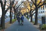 http://photo.woodsmall.jp/images/sa_14.jpg